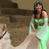 auf dem Kamel